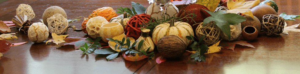 Thanksgiving table mesa decoracao decoration