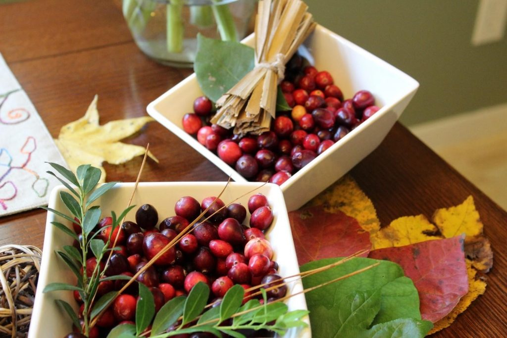 thanksgiving cranberry table decoration decoracao de mesa