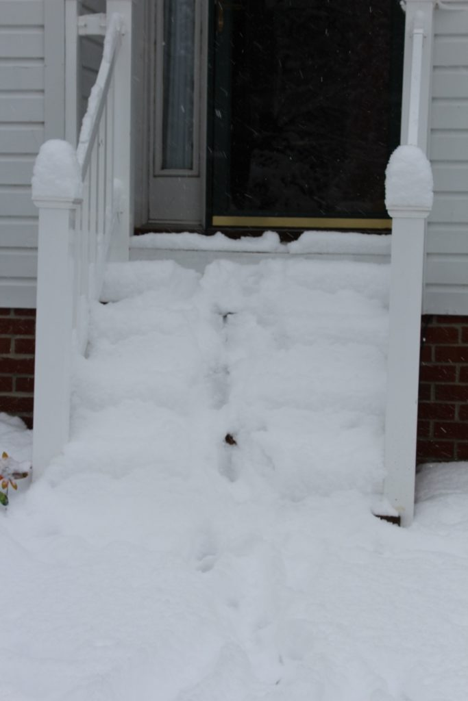 inverno neve tormenta winter snow storm