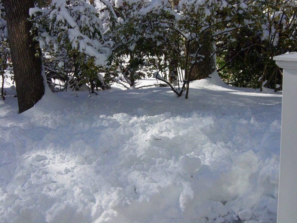 snow winter storm inverno neve tempestade