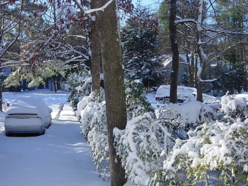 neve snow winter inverno carros cars