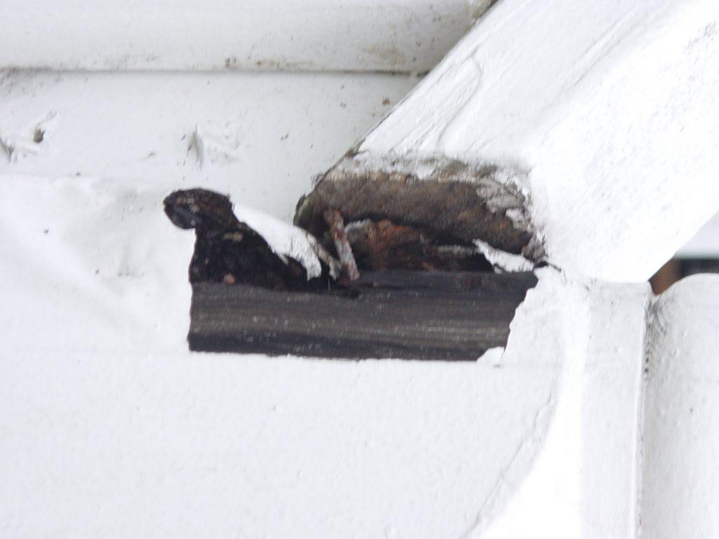 snow winter damages inverno neve consertos