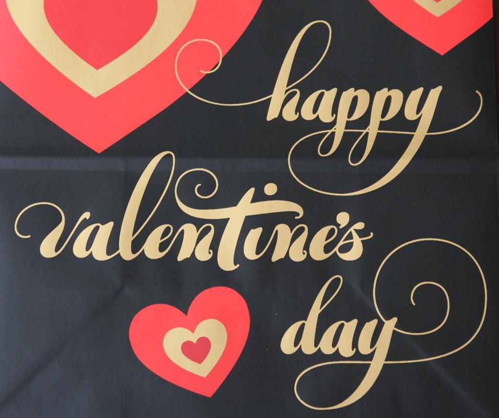 valentines day dia namorados amor love happy feliz
