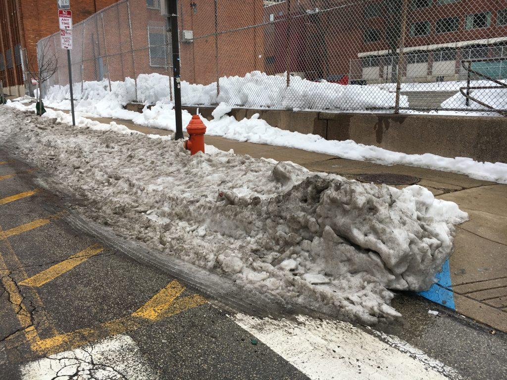 Com a neve suja ainda amontoada na lateral das ruas – e o horário de verão que já iniciou em 12 de março – nós recebemos a maravilhosa estação da primavera!