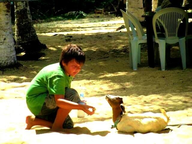 B7 dando mamadeira para a cabrinha na Ilha dos Macacos