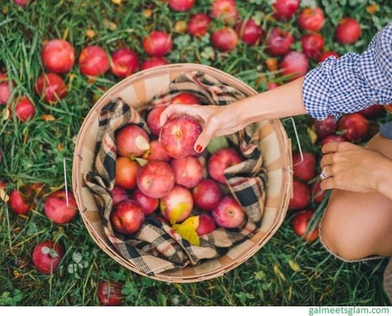 maçã colheita pomar outono autumn fall
