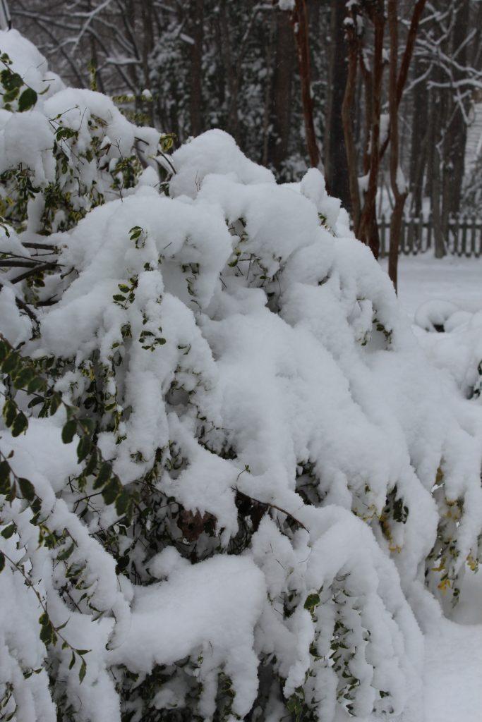 neve snow winter inverno tempestade storm