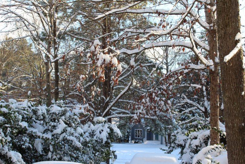 winter inverno neve snow tempestade storm