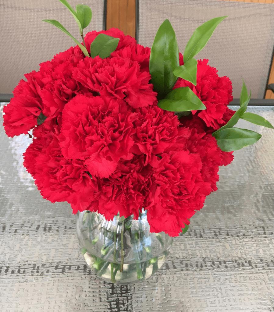 flores vermelhas red flowers valentines day dia dos namorados love amor