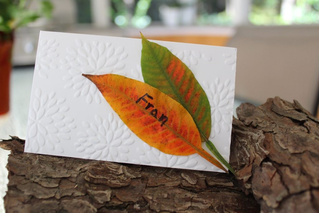 placement cards cartoes nome convidados relevo embossing