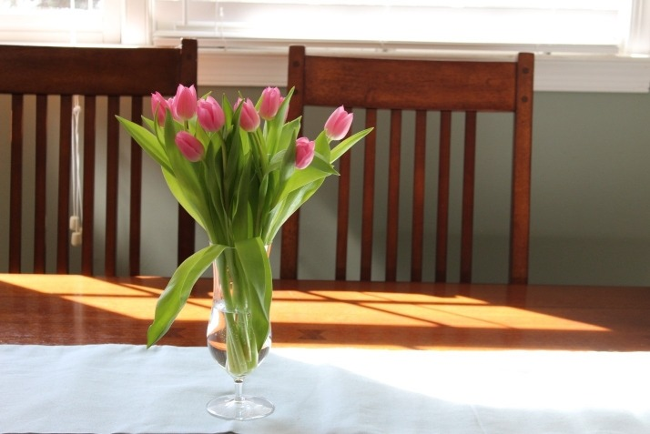 flowers easter tulips flores pascoa tulipas