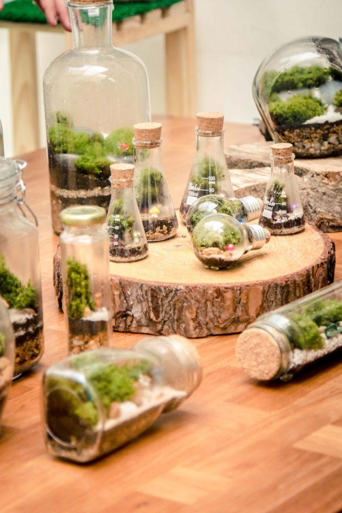mimos natal ecologicos